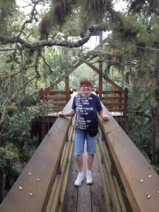 Suspension bridge at Myakka River State Park