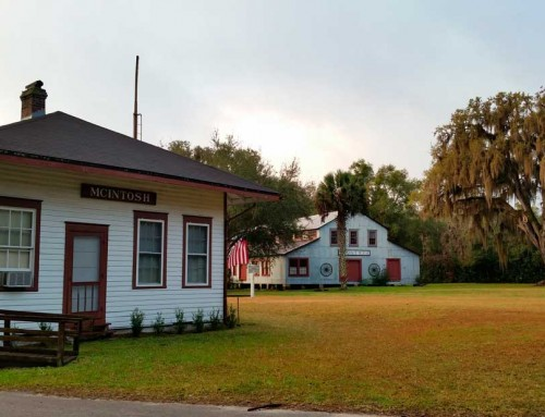 Exploring Micanopy Florida in the morning